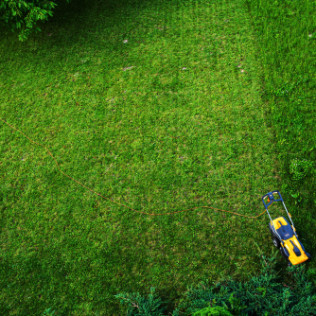 lawn care service new haven ct